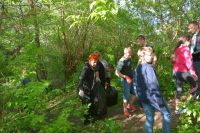 Więcej o: Sprzątanie brzegów Narwi
